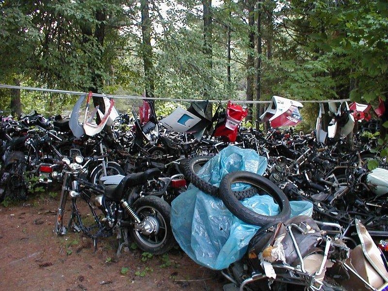 Does the Bike Bone Yard salvage Kawasakis?